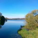 Jezioro Brodno